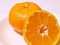ムサシヤフルーツの日の丸みかん